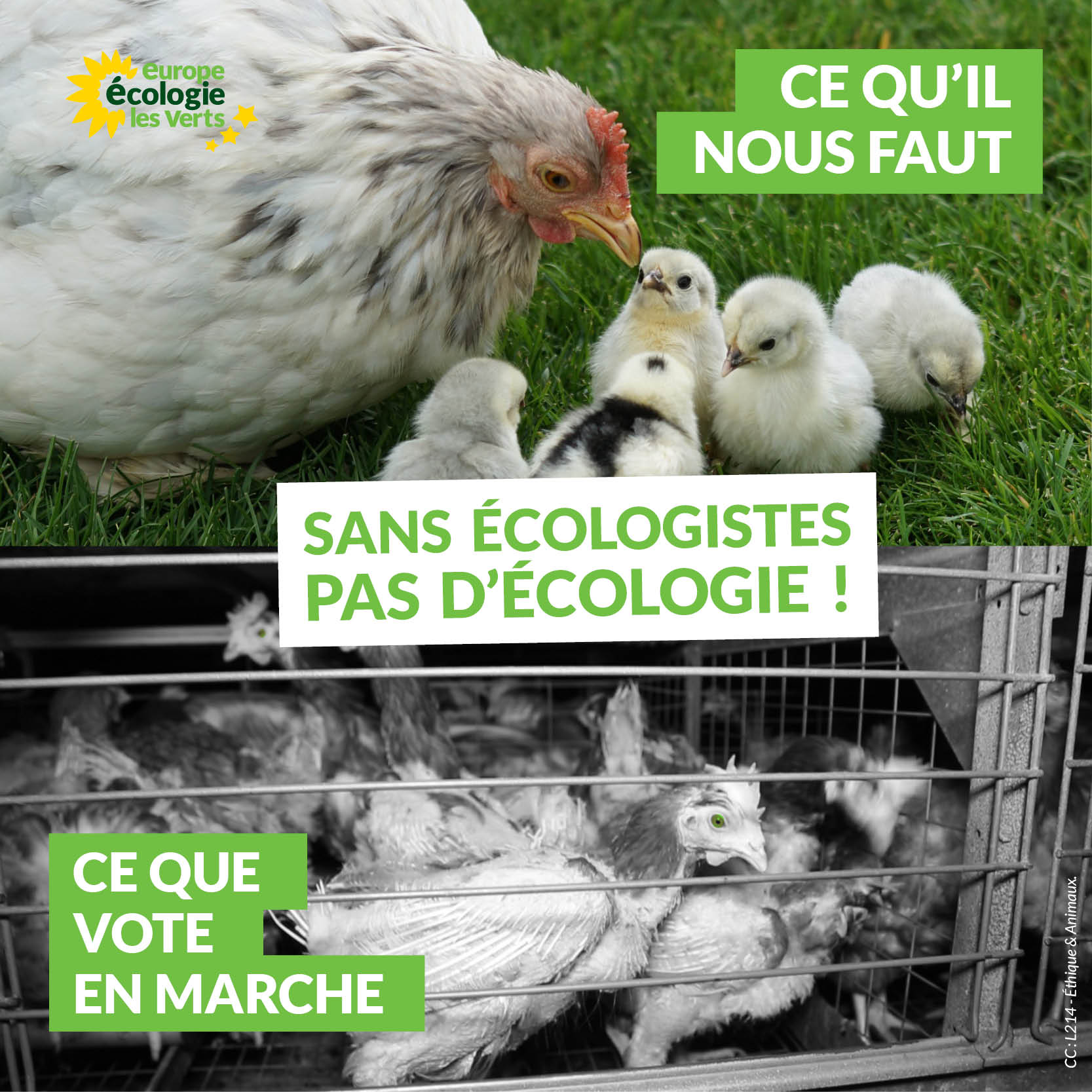 Sans écologistes, pas d'écologie : la preuve avec les votes LREM