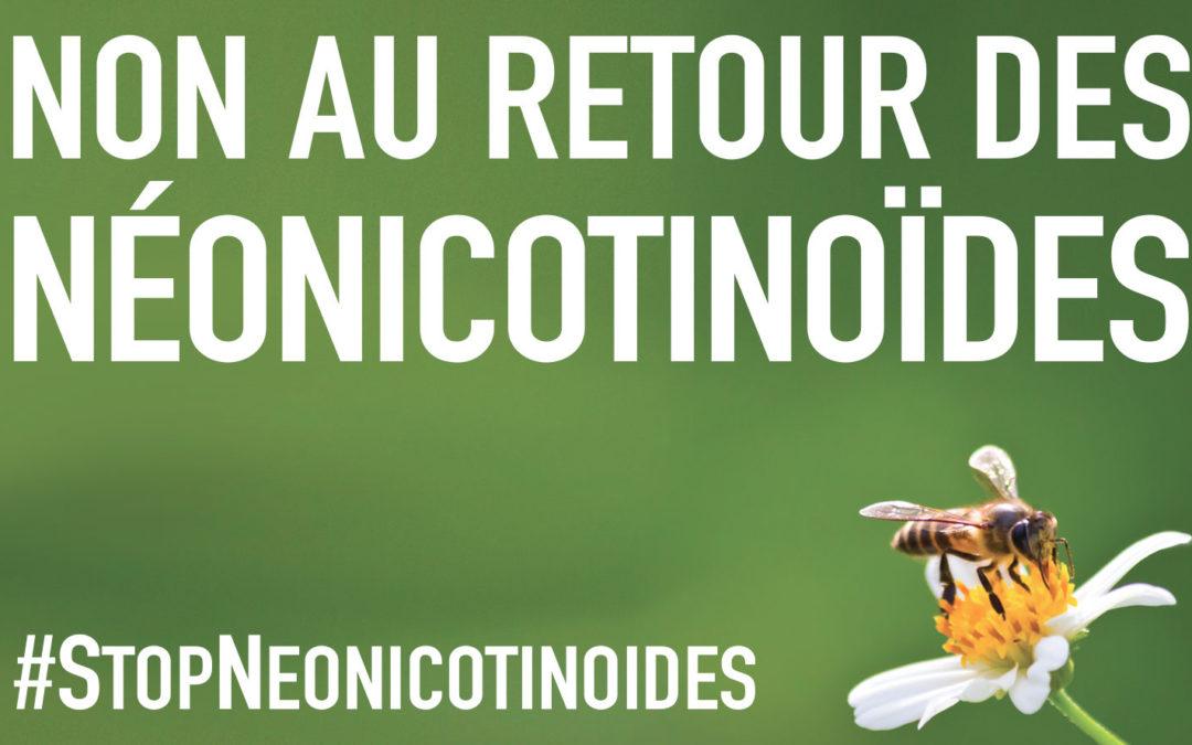 Interpellez votre député.e sur le retour des néonicotinoïdes !