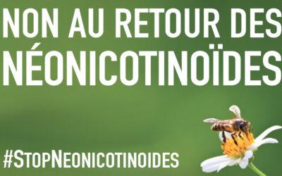 Néonicotinoïdes : Non à la réintroduction des pesticides tueurs d'abeilles